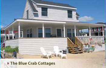Blue Crab Cottage