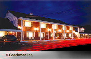 Pet Friendly Hotels On The Southern Maine Coast