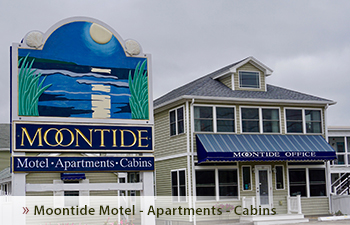 Moontide Motel, Cabins