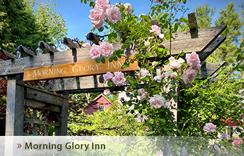 Morning Glory Inn