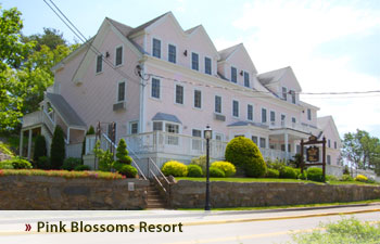 Pink Blossoms Resort