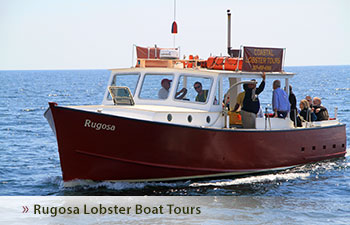 Rugosa Lobster Boat Tours