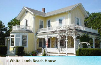 Beach House, White Lamb