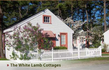 White Lamb Cottages