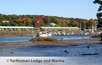 Pet Friendly Hotels In Southern Maine